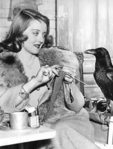 Knitting bette davis