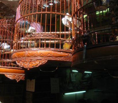 Birdcages_1