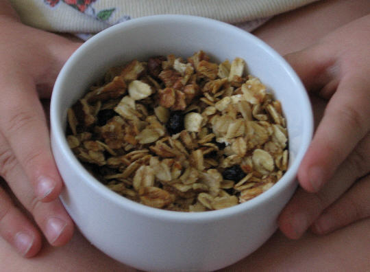 Blueberry_granola_1
