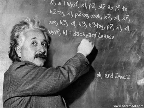 Einstein_knits